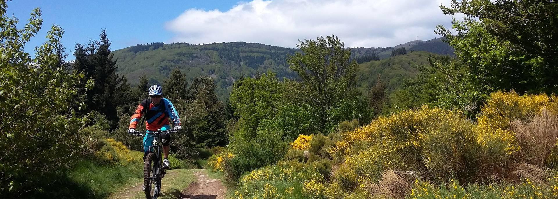 crêt oeillon parc pilat perdrix vtt itinéraires rhône alpes auvergne monotrace singletrack sentiers balisés