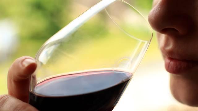 Dégustation de vin de St Joseph