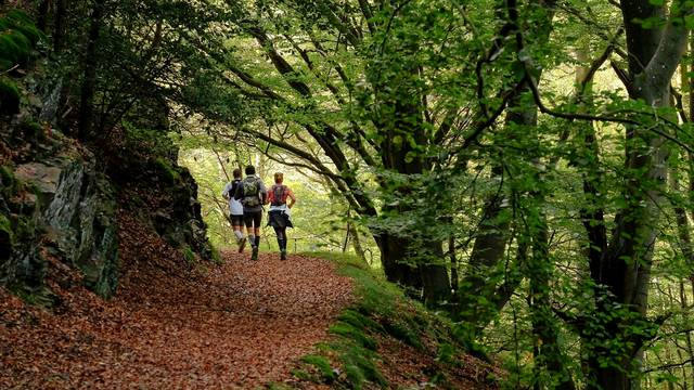 incontournables octobre trail haut pilat