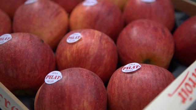 incontournables pilat novembre événement fête pomme