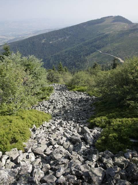 Sentier des crets du pilat