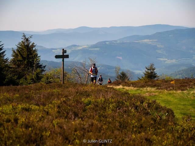 pilatrail trail pilat course challenge sentiers crêts ronde veranne traversée 3 dents incontournables juin