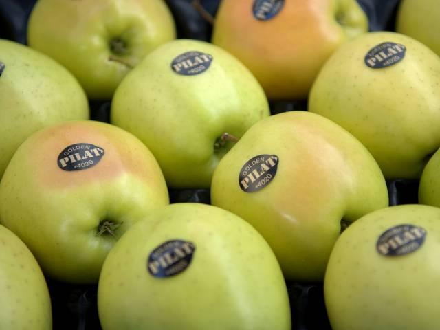 événements incontournables pilat octobre fete pomme pelussin