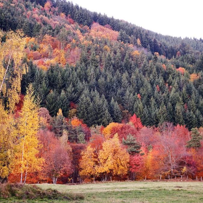 Col république automne